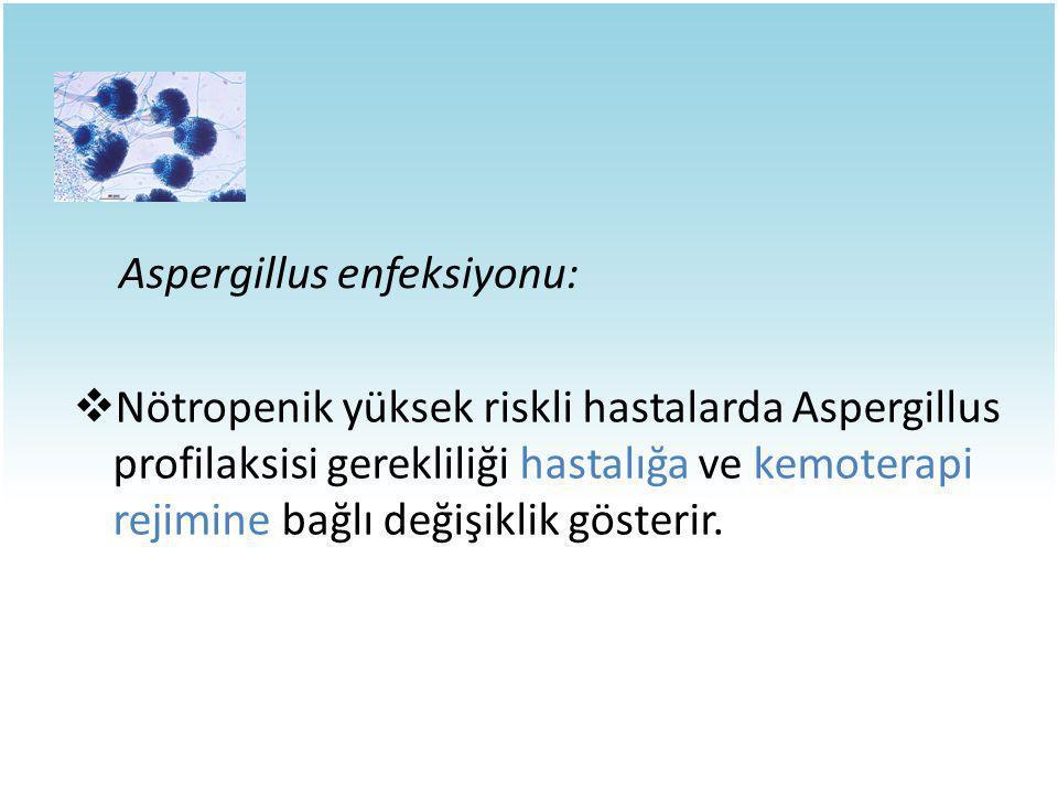 Aspergillus enfeksiyonu: