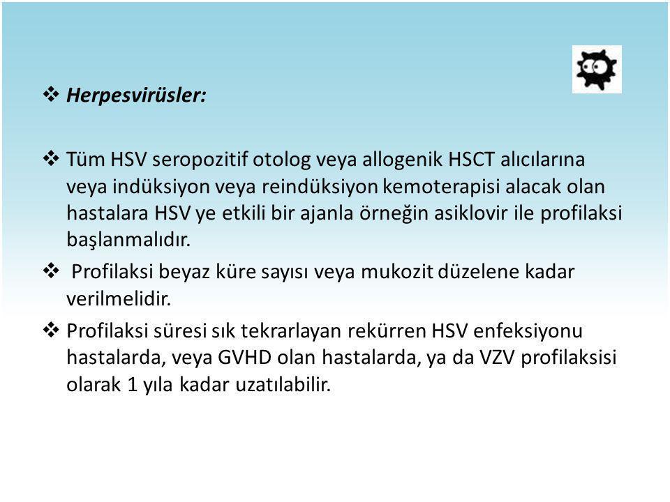 Herpesvirüsler: