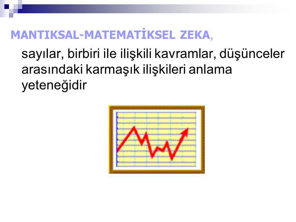 MANTIKSAL-MATEMATİKSEL ZEKA,