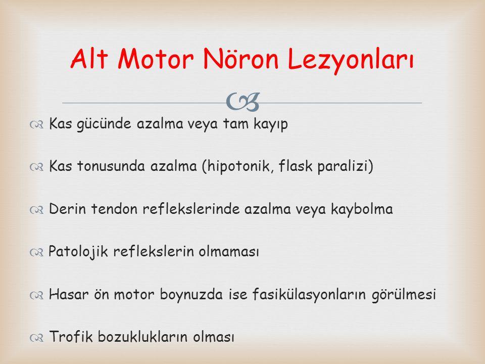 Alt Motor Nöron Lezyonları