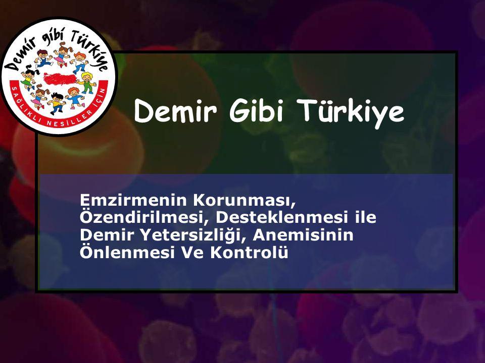 Demir Gibi Türkiye Emzirmenin Korunması, Özendirilmesi, Desteklenmesi ile Demir Yetersizliği, Anemisinin Önlenmesi Ve Kontrolü.