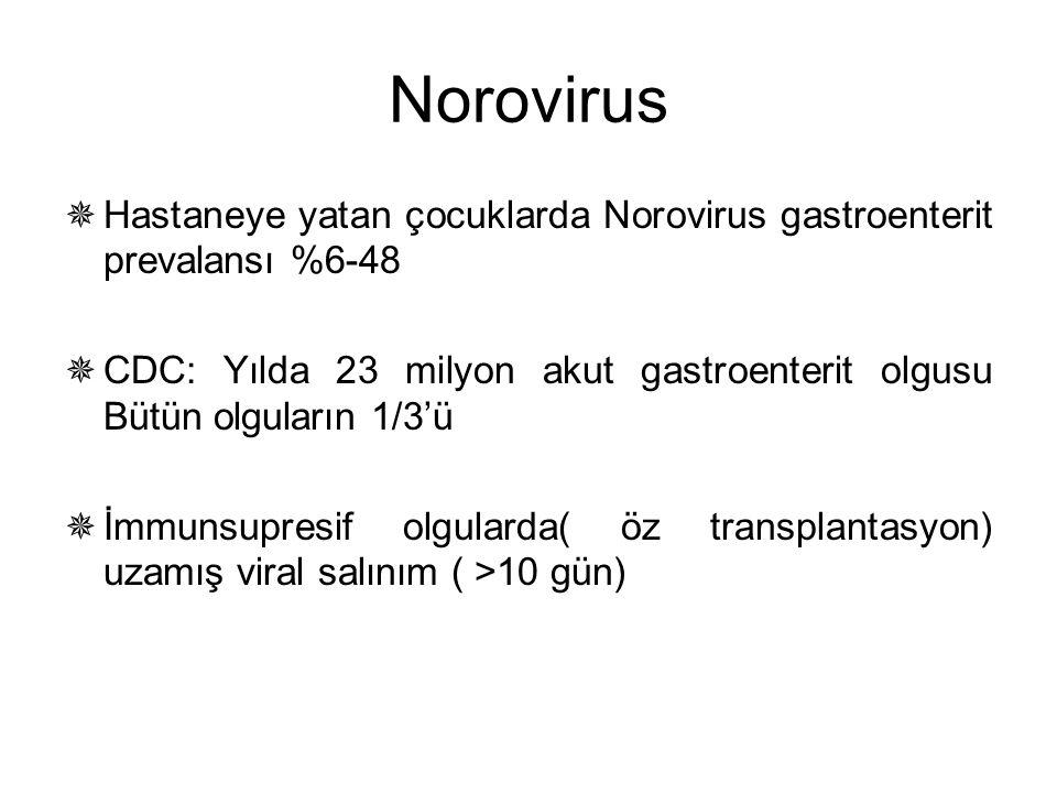 Norovirus Hastaneye yatan çocuklarda Norovirus gastroenterit prevalansı %6-48. CDC: Yılda 23 milyon akut gastroenterit olgusu Bütün olguların 1/3'ü.