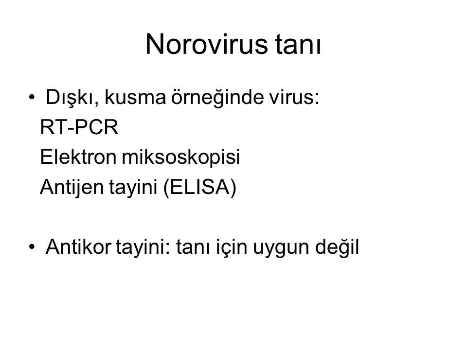 Norovirus tanı Dışkı, kusma örneğinde virus: RT-PCR