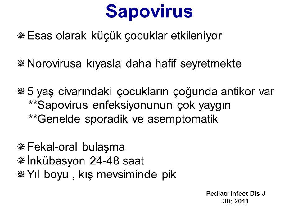 Sapovirus Esas olarak küçük çocuklar etkileniyor