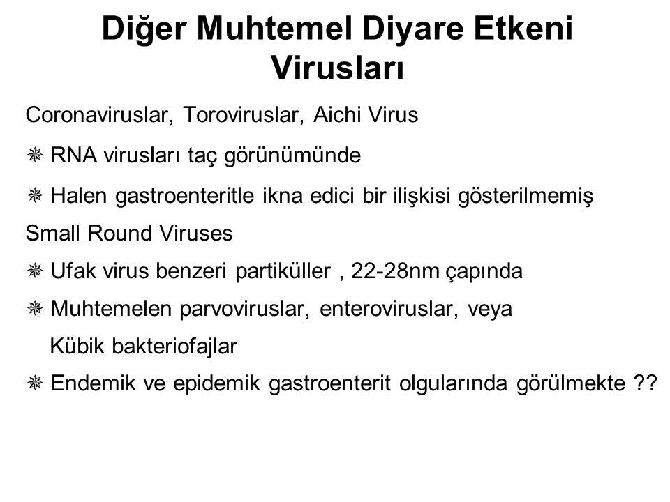 Diğer Muhtemel Diyare Etkeni Virusları