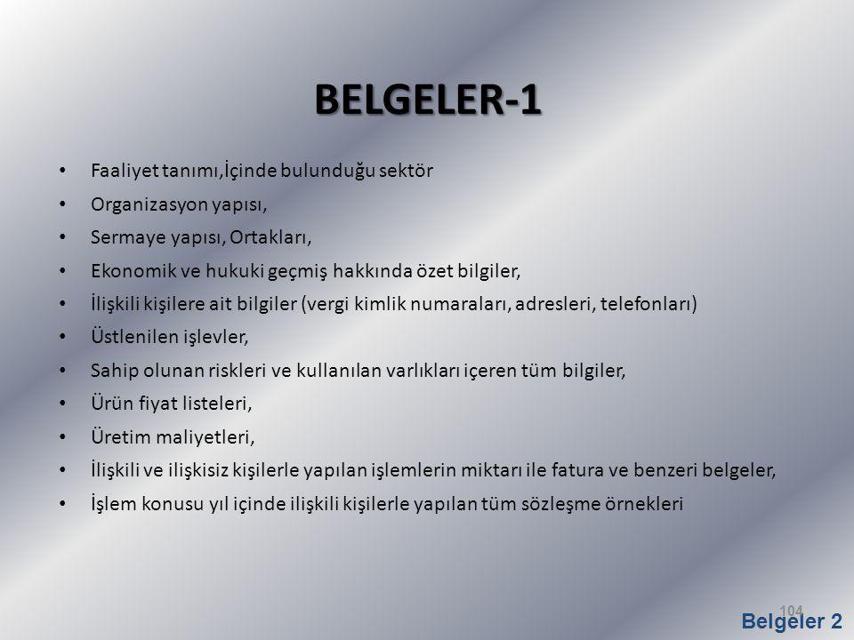 BELGELER-1 Faaliyet tanımı,İçinde bulunduğu sektör