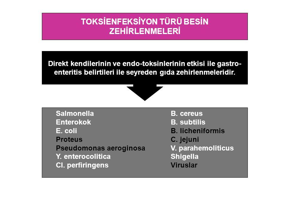 TOKSİENFEKSİYON TÜRÜ BESİN