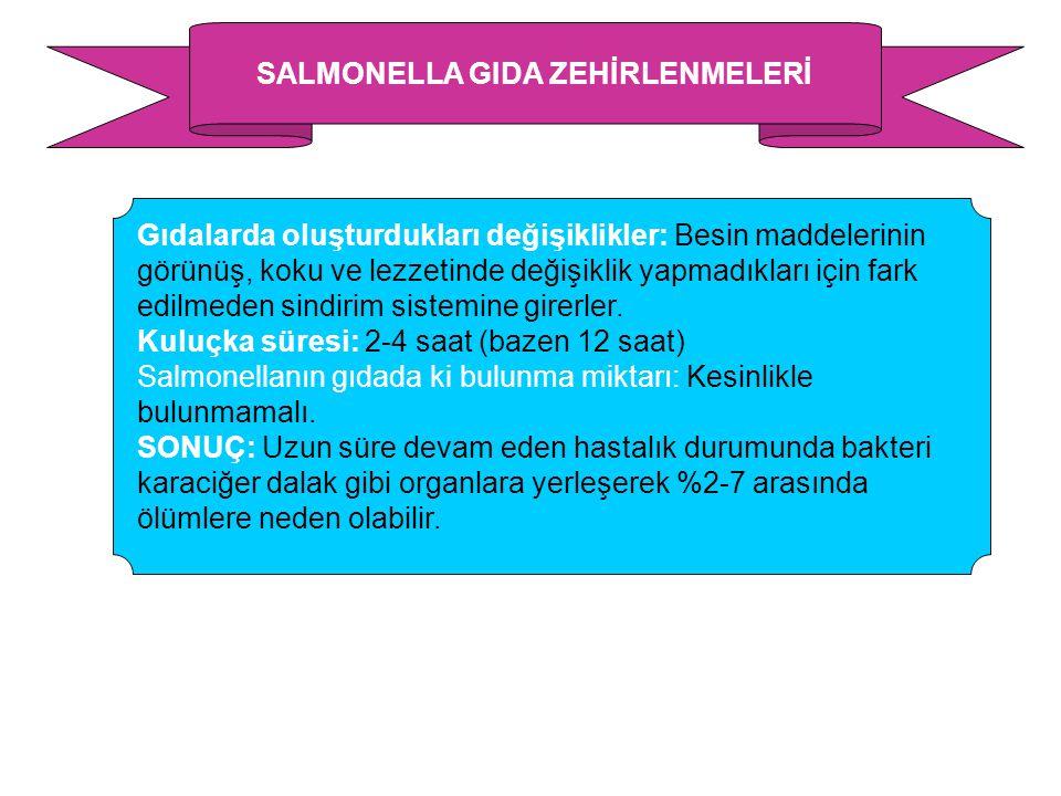 SALMONELLA GIDA ZEHİRLENMELERİ