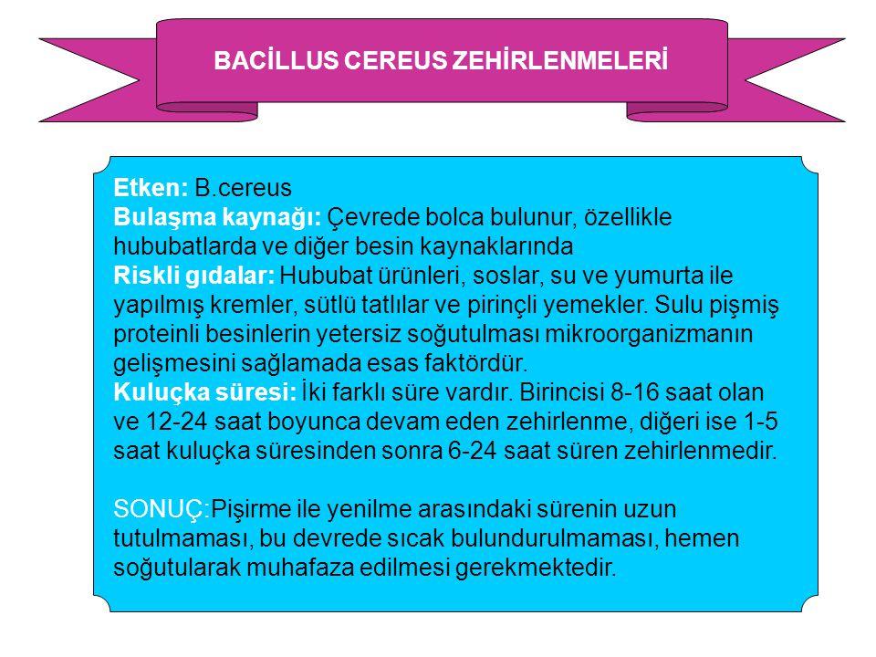 BACİLLUS CEREUS ZEHİRLENMELERİ