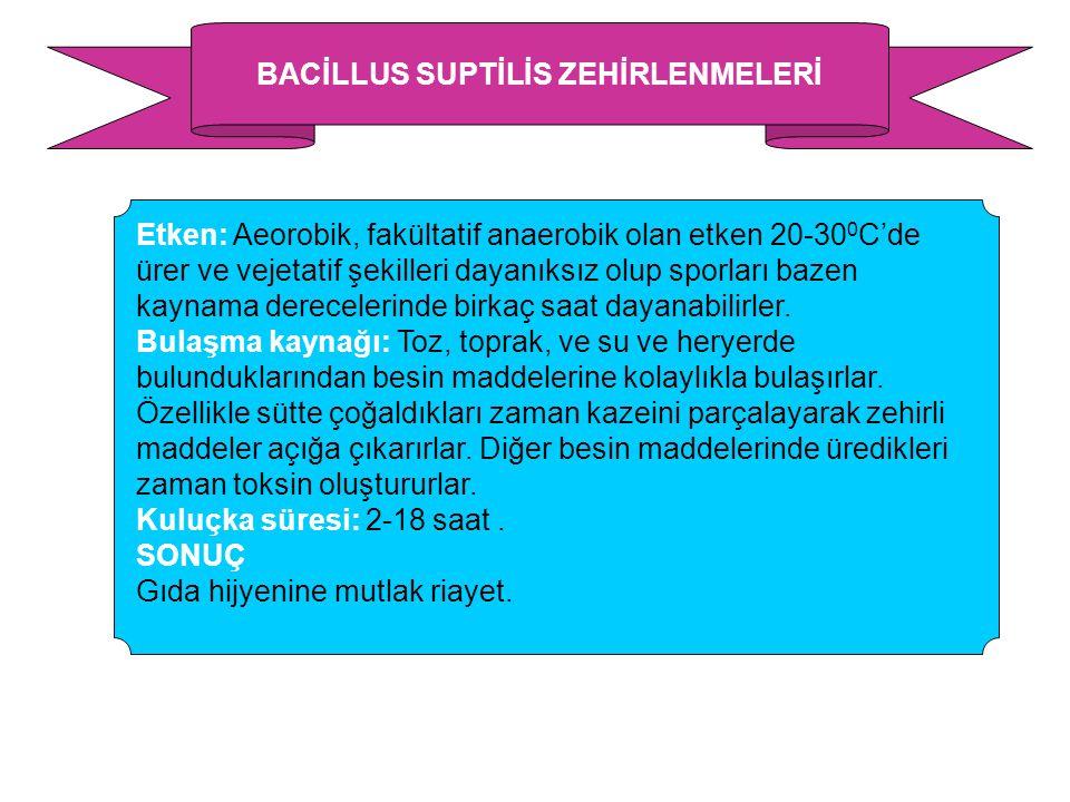 BACİLLUS SUPTİLİS ZEHİRLENMELERİ