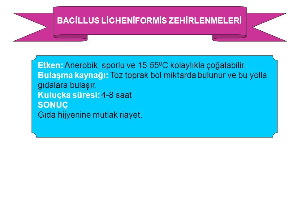 BACİLLUS LİCHENİFORMİS ZEHİRLENMELERİ