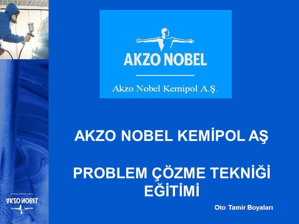 AKZO NOBEL KEMİPOL AŞ PROBLEM ÇÖZME TEKNİĞİ EĞİTİMİ