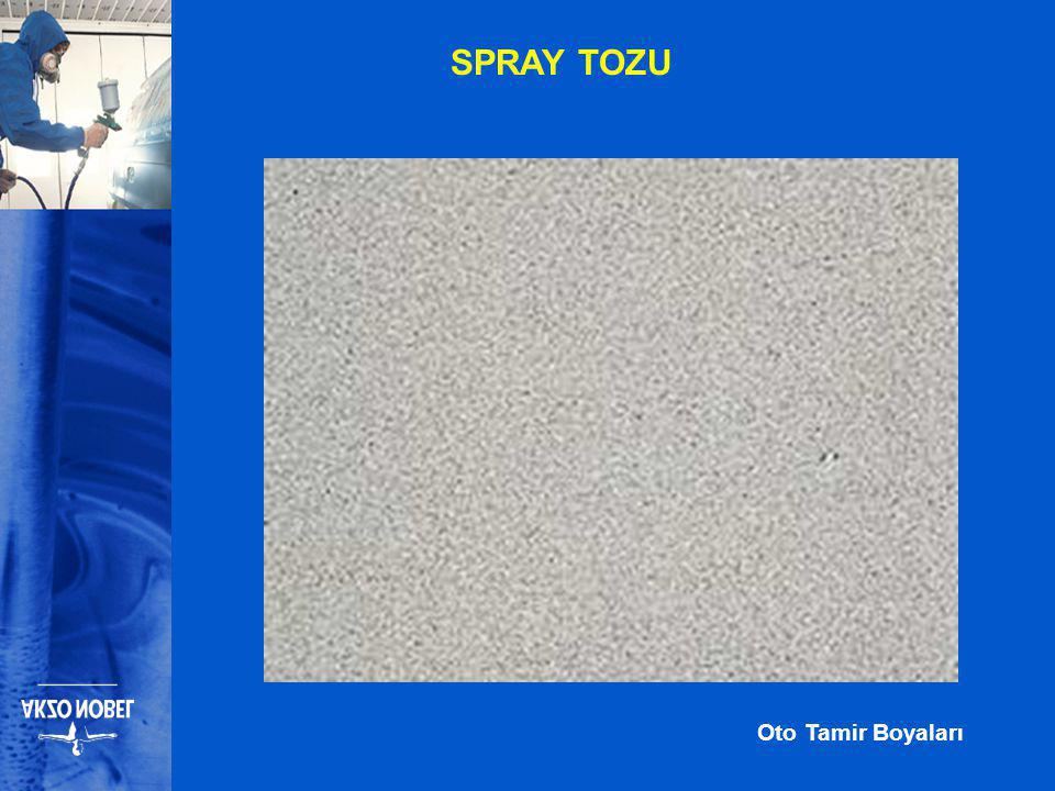 SPRAY TOZU