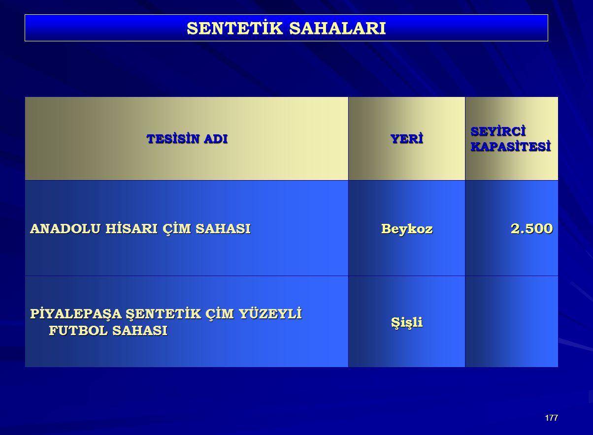 SENTETİK SAHALARI ANADOLU HİSARI ÇİM SAHASI Beykoz 2.500