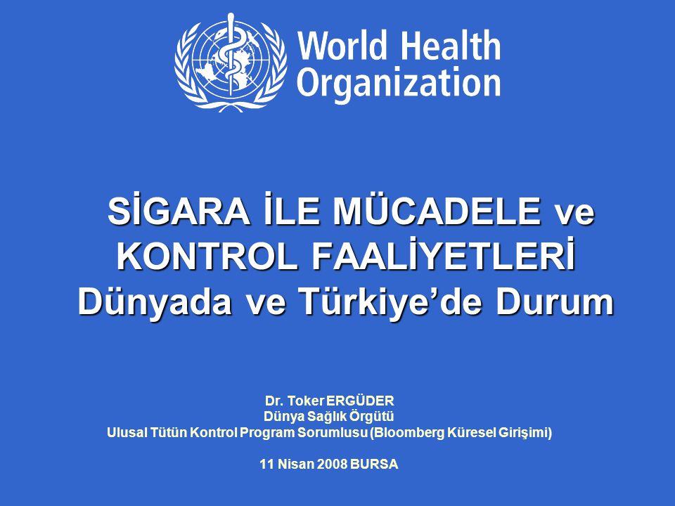 Ulusal Tütün Kontrol Program Sorumlusu (Bloomberg Küresel Girişimi)