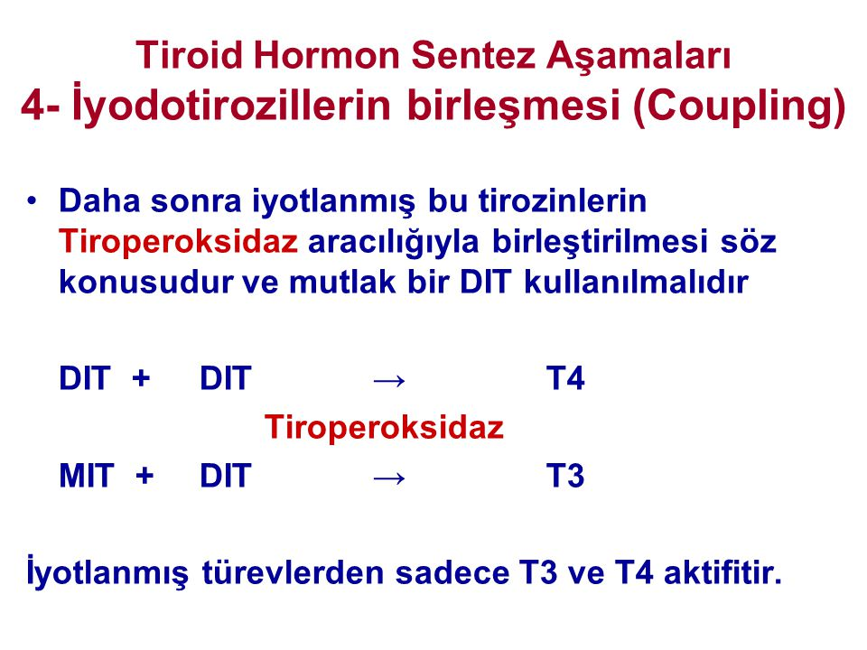 Tiroid Hormon Sentez Aşamaları 4- İyodotirozillerin birleşmesi (Coupling)