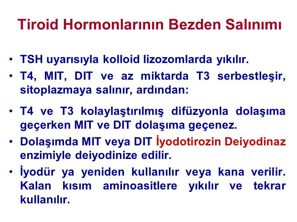 Tiroid Hormonlarının Bezden Salınımı