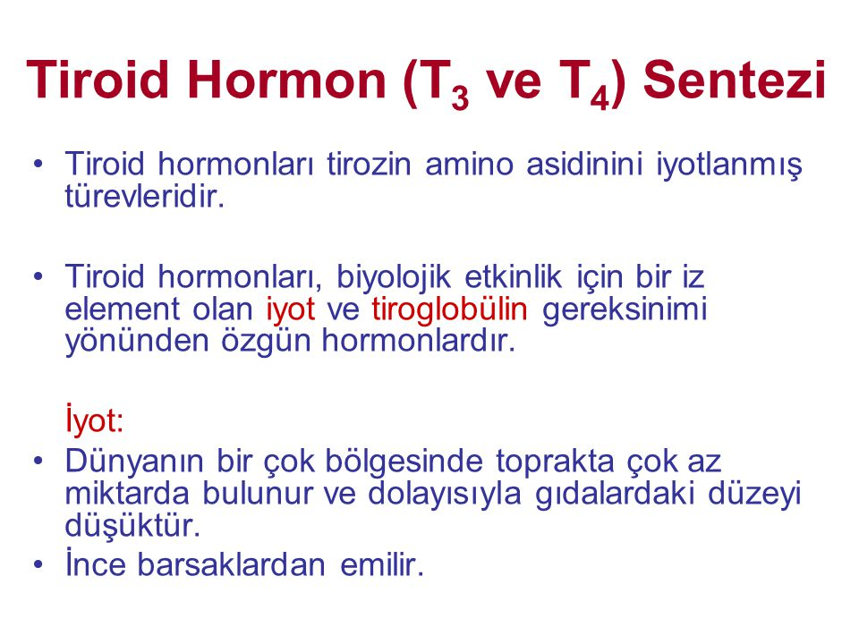 Tiroid Hormon (T3 ve T4) Sentezi