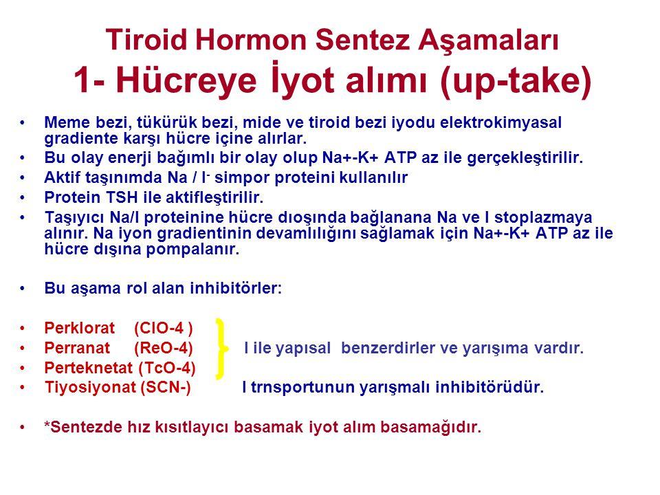 Tiroid Hormon Sentez Aşamaları 1- Hücreye İyot alımı (up-take)