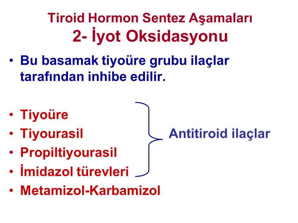 Tiroid Hormon Sentez Aşamaları 2- İyot Oksidasyonu