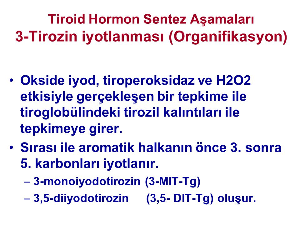 Tiroid Hormon Sentez Aşamaları 3-Tirozin iyotlanması (Organifikasyon)