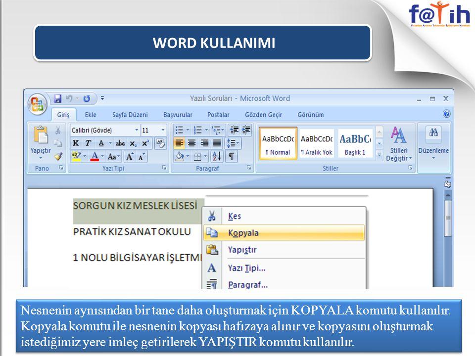 WORD KULLANIMI