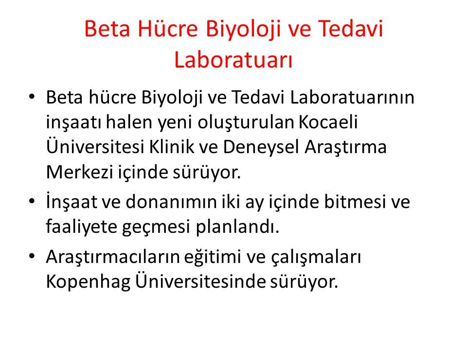 Beta Hücre Biyoloji ve Tedavi Laboratuarı