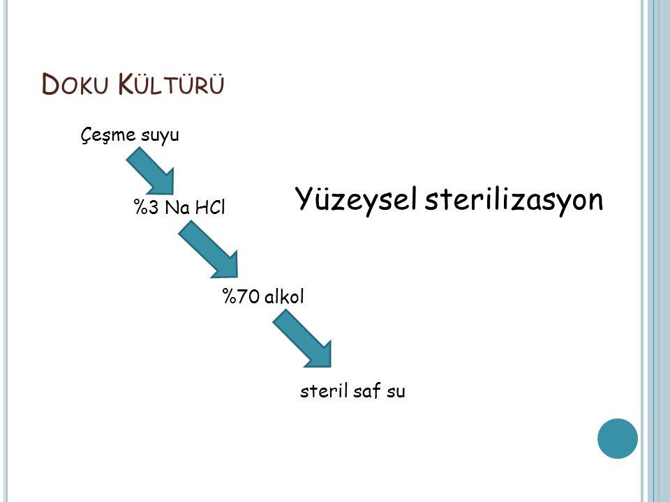 Yüzeysel sterilizasyon