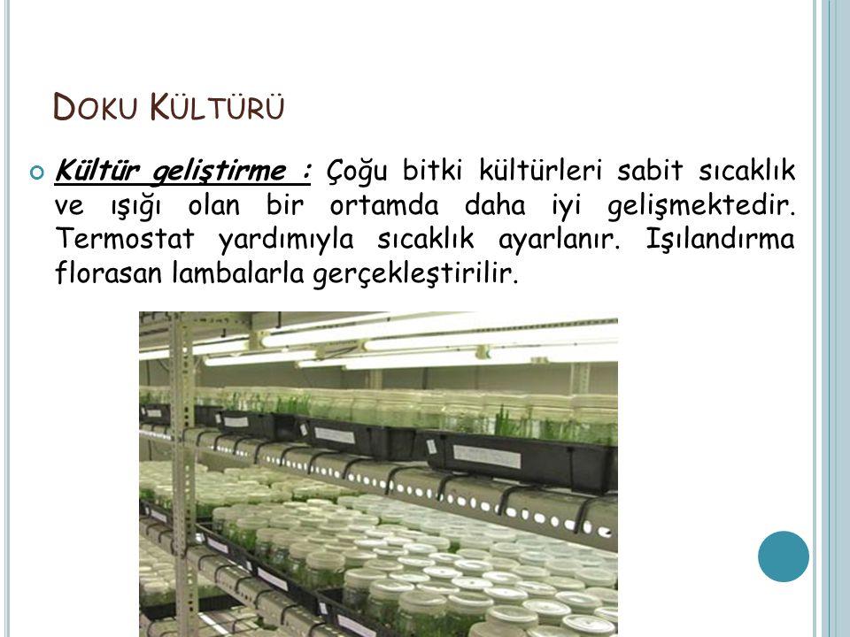Doku Kültürü