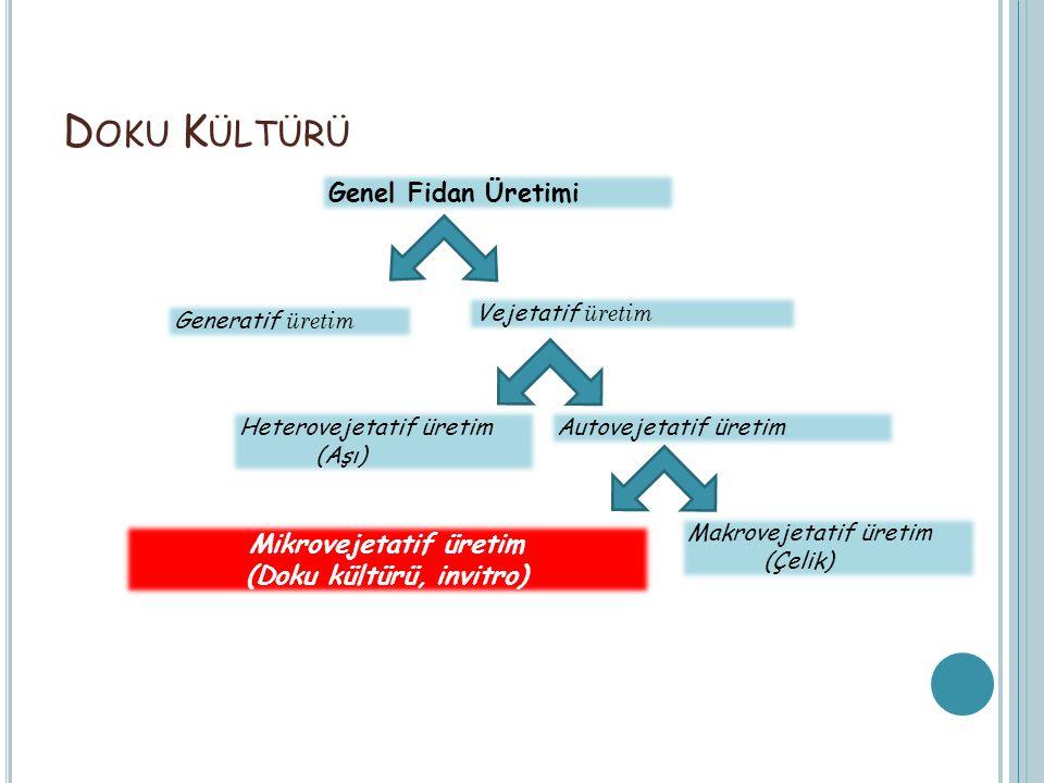 Mikrovejetatif üretim (Doku kültürü, invitro)