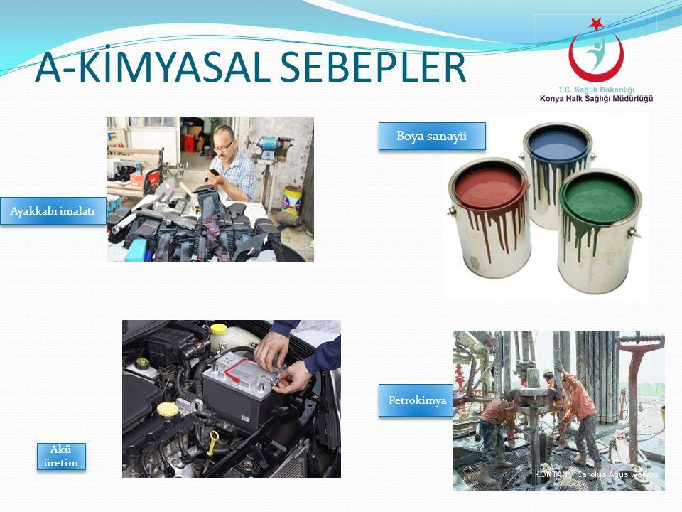 A-KİMYASAL SEBEPLER Boya sanayii Ayakkabı imalatı Petrokimya