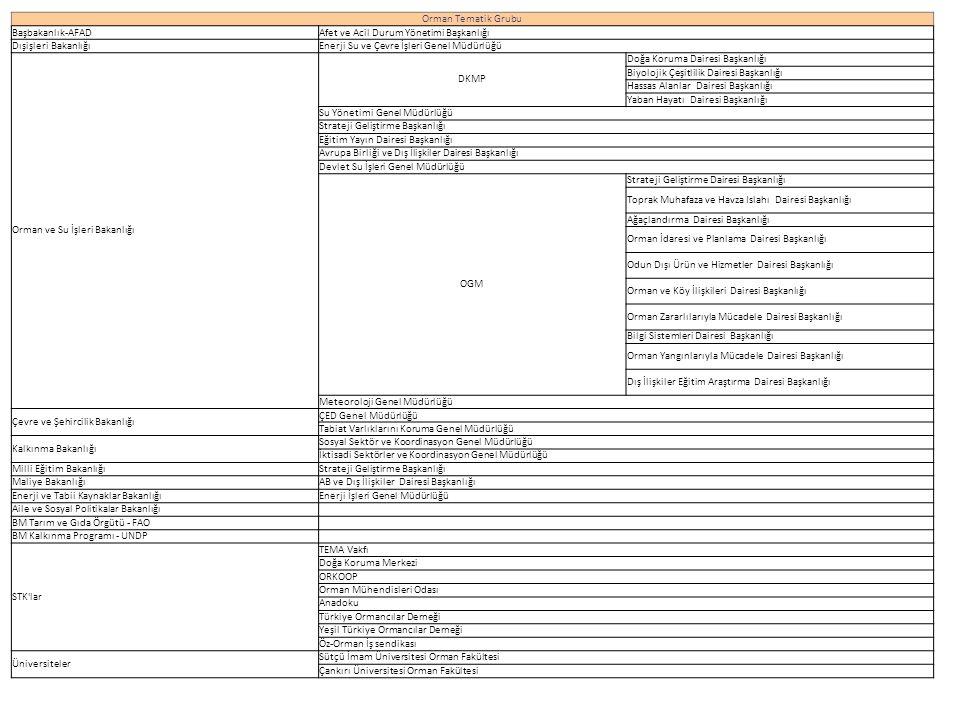 Orman Tematik Grubu Başbakanlık-AFAD. Afet ve Acil Durum Yönetimi Başkanlığı. Dışişleri Bakanlığı.