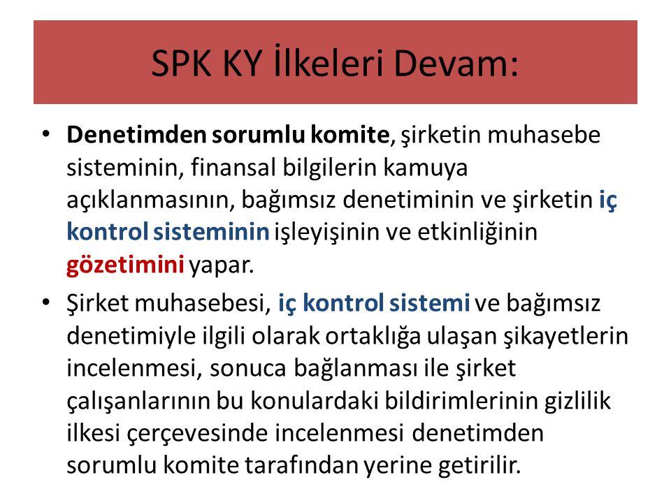 SPK KY İlkeleri Devam: