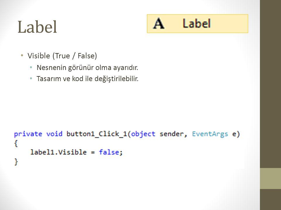 Label Visible (True / False) Nesnenin görünür olma ayarıdır.