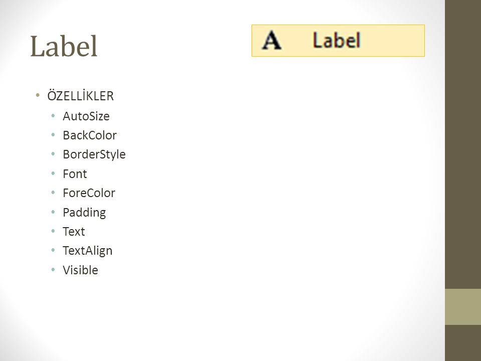 Label ÖZELLİKLER AutoSize BackColor BorderStyle Font ForeColor Padding