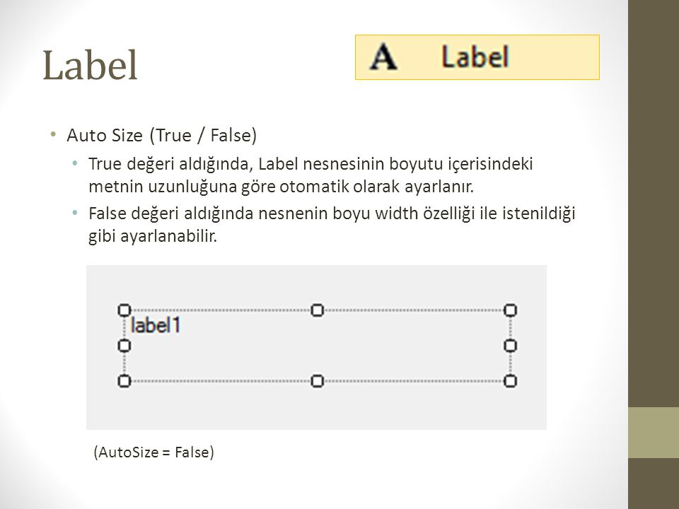 Label Auto Size (True / False)