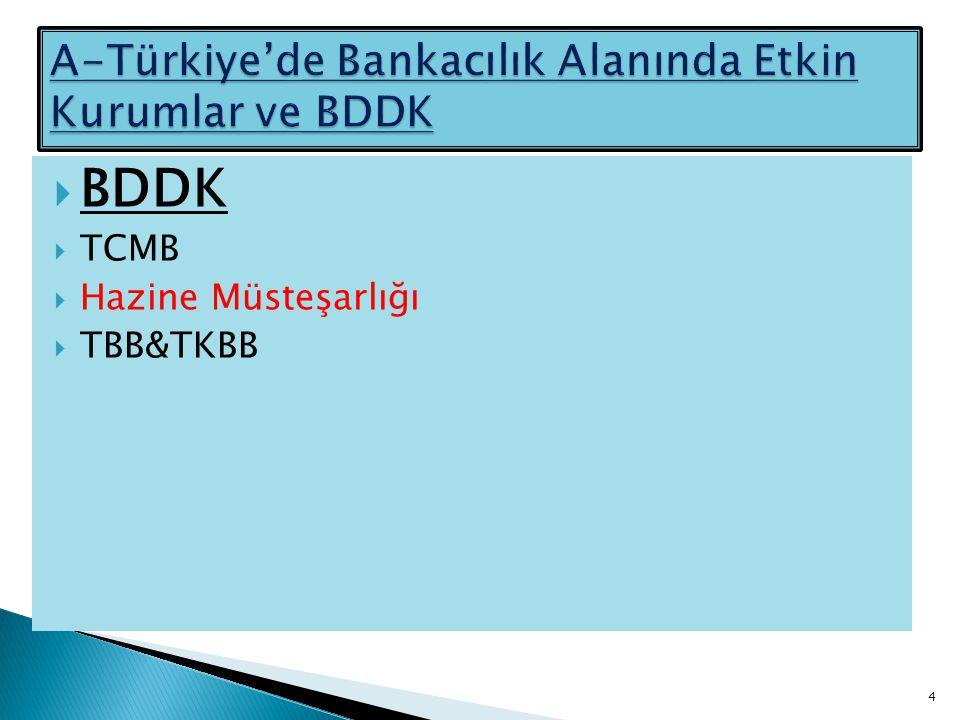 A-Türkiye'de Bankacılık Alanında Etkin Kurumlar ve BDDK