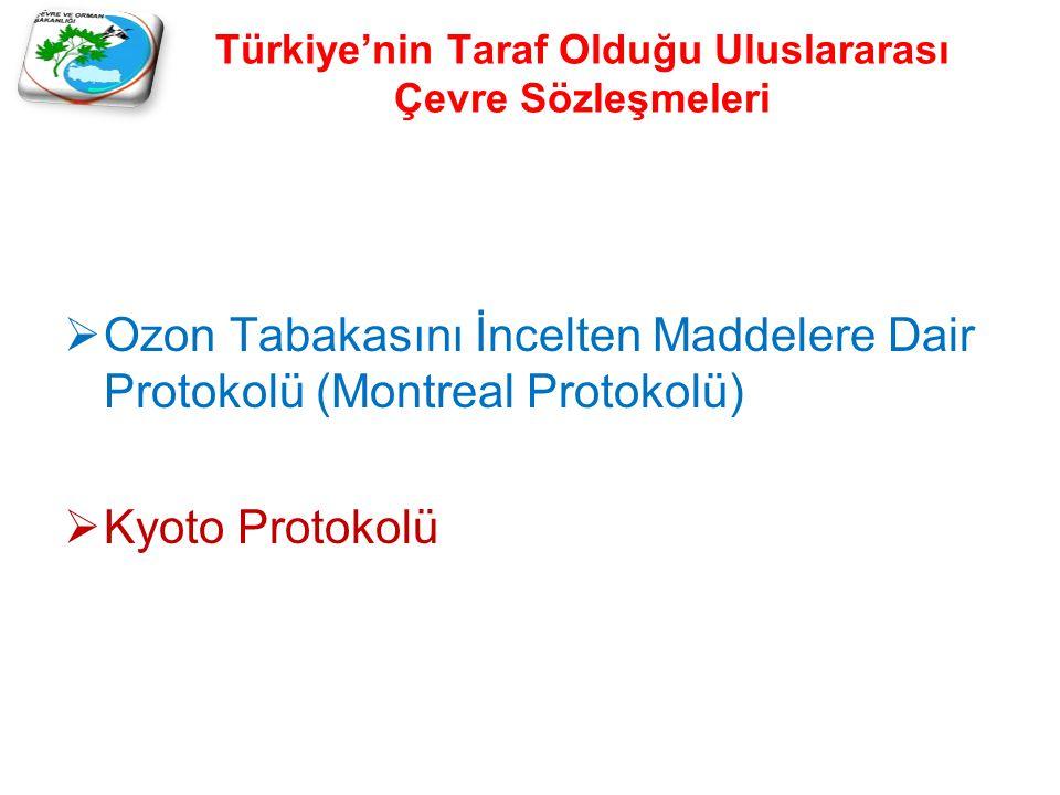 Türkiye'nin Taraf Olduğu Uluslararası Çevre Sözleşmeleri