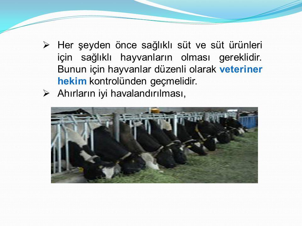 Her şeyden önce sağlıklı süt ve süt ürünleri için sağlıklı hayvanların olması gereklidir. Bunun için hayvanlar düzenli olarak veteriner hekim kontrolünden geçmelidir.