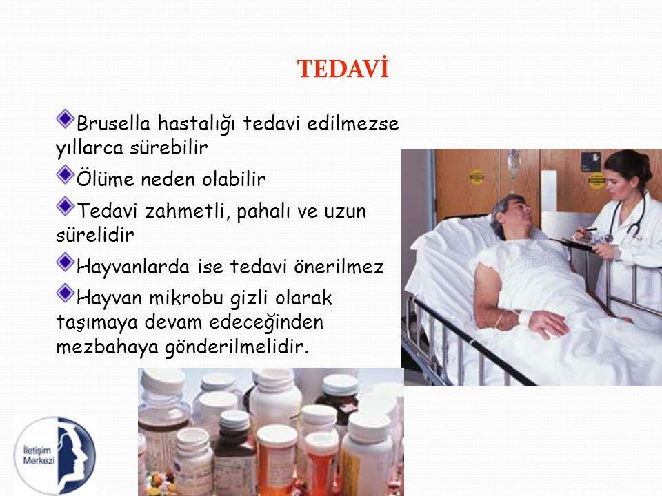 TEDAVİ Brusella hastalığı tedavi edilmezse yıllarca sürebilir