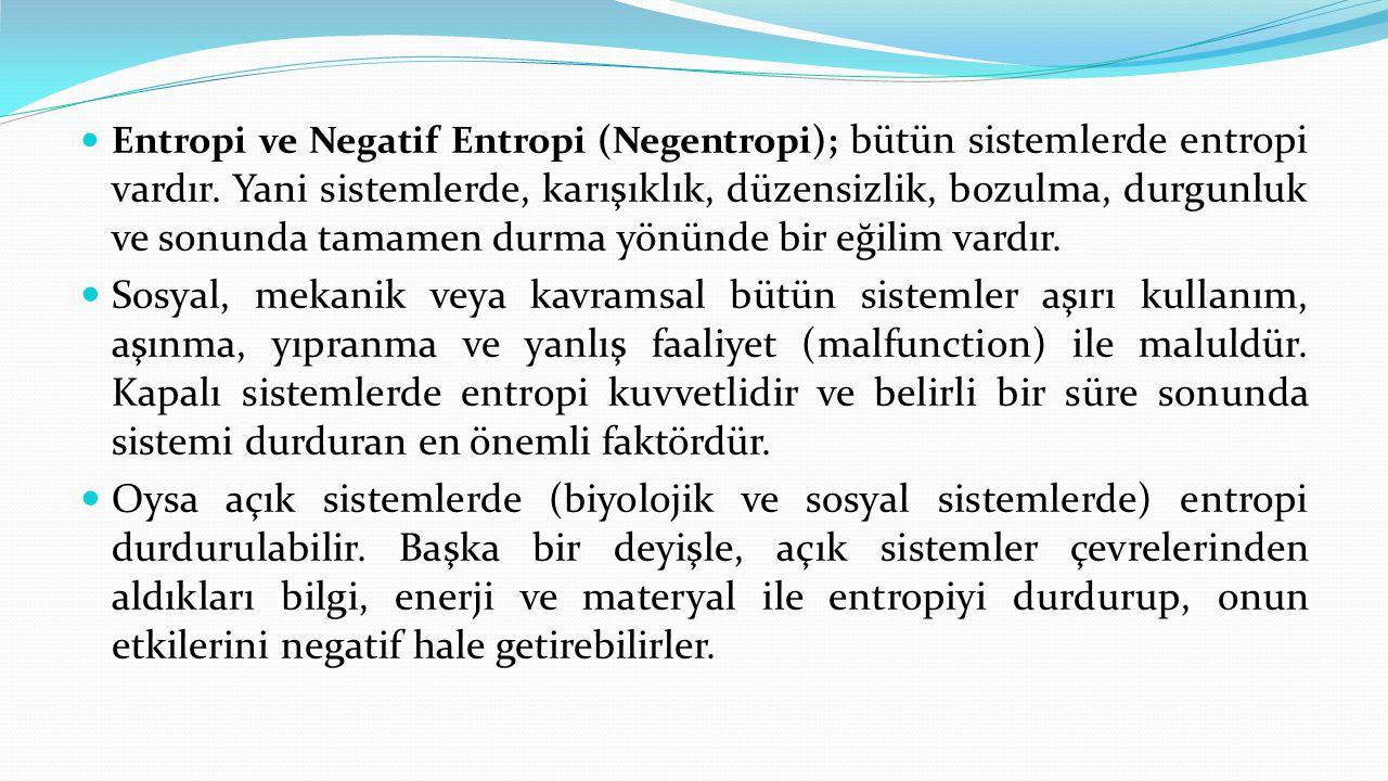 Entropi ve Negatif Entropi (Negentropi); bütün sistemlerde entropi vardır. Yani sistemlerde, karışıklık, düzensizlik, bozulma, durgunluk ve sonunda tamamen durma yönünde bir eğilim vardır.