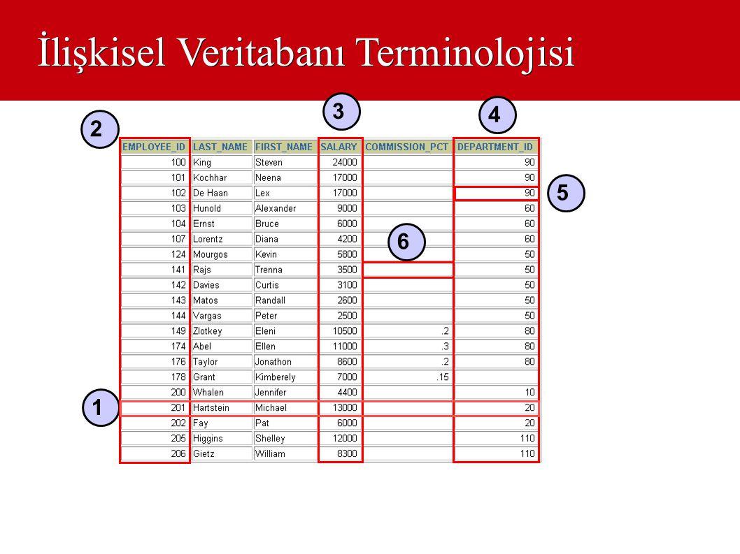 İlişkisel Veritabanı Terminolojisi