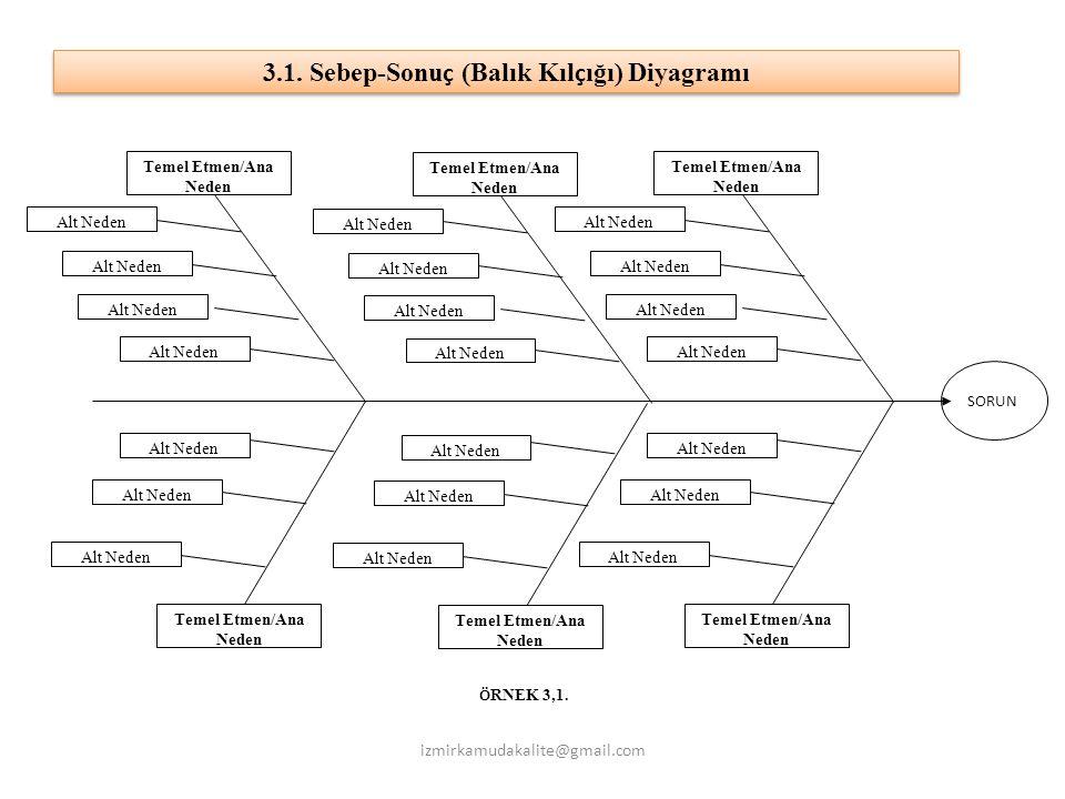 3.1. Sebep-Sonuç (Balık Kılçığı) Diyagramı