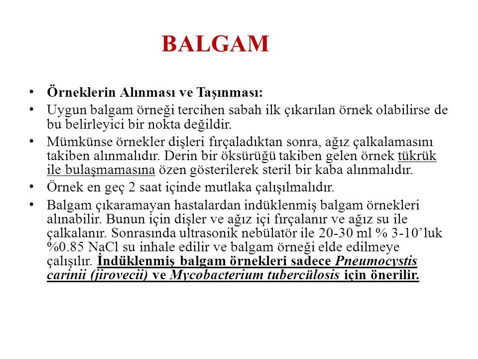 BALGAM Örneklerin Alınması ve Taşınması: