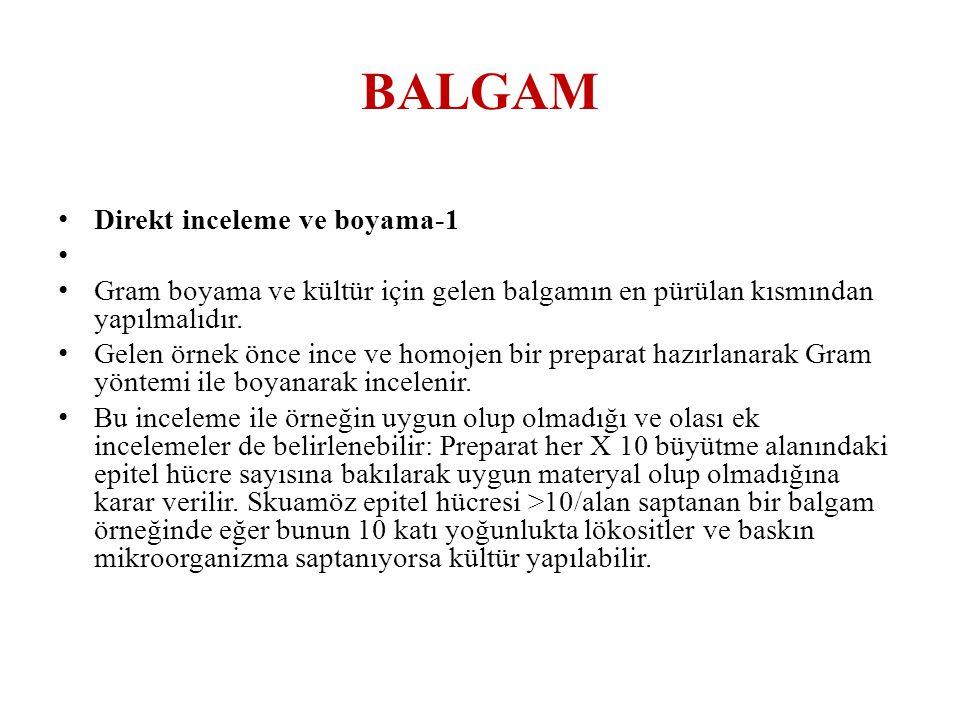 BALGAM Direkt inceleme ve boyama-1