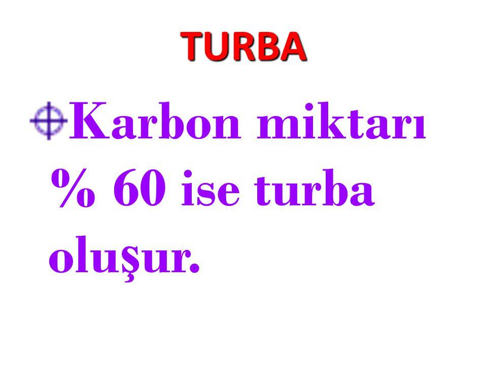 Karbon miktarı % 60 ise turba oluşur.