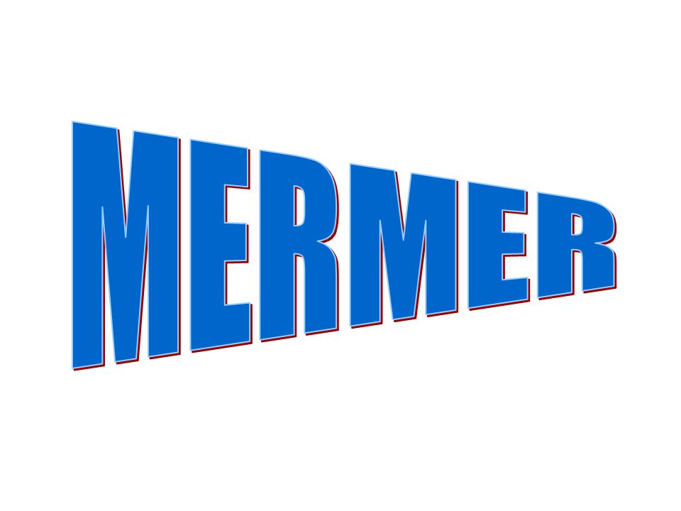 MERMER
