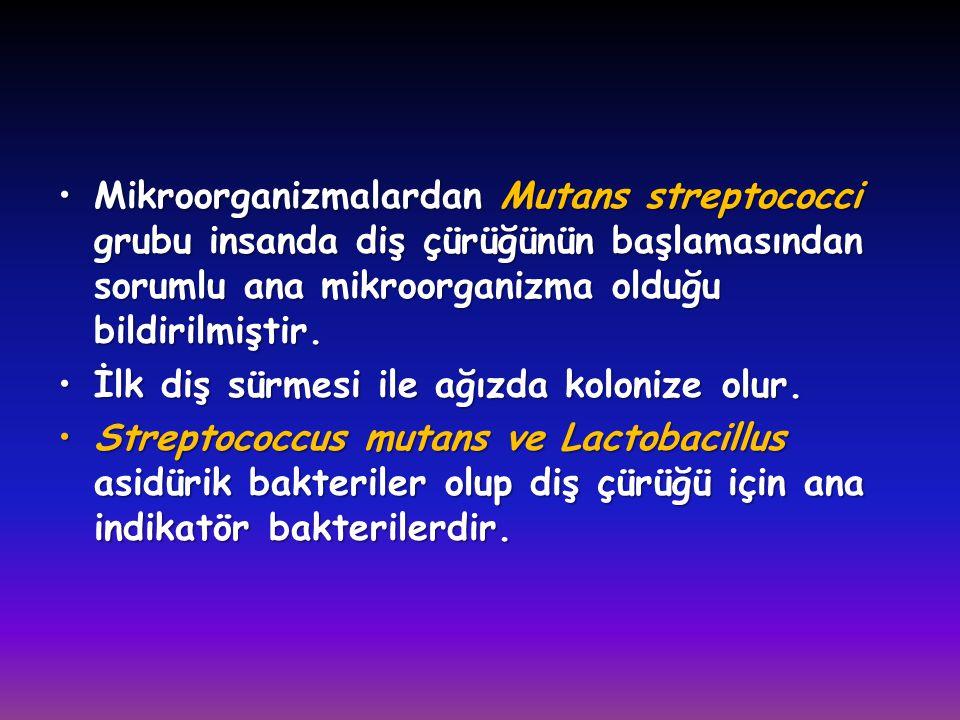 Mikroorganizmalardan Mutans streptococci grubu insanda diş çürüğünün başlamasından sorumlu ana mikroorganizma olduğu bildirilmiştir.