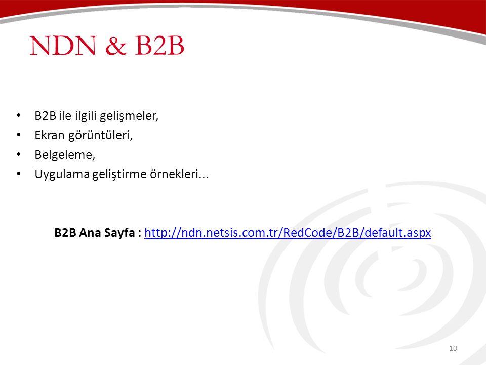 B2B Ana Sayfa : http://ndn.netsis.com.tr/RedCode/B2B/default.aspx