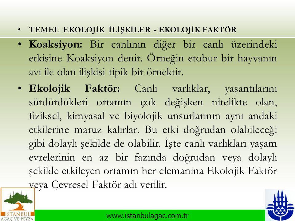 TEMEL EKOLOJİK İLİŞKİLER - EKOLOJİK FAKTÖR